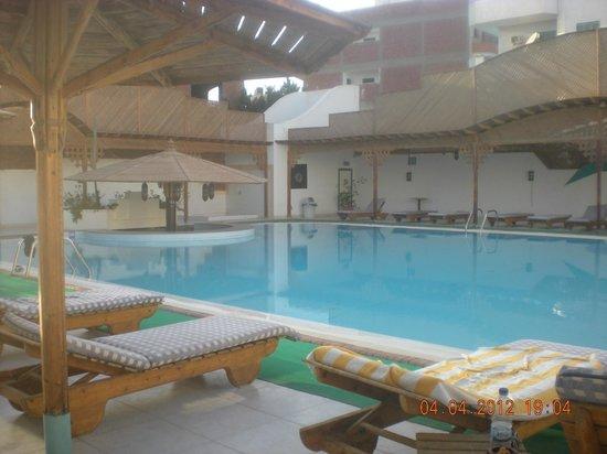 Amira Divers Inn : бассейн