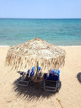 Akrogiali Taverna: Strandsicht direkt von der Tavere