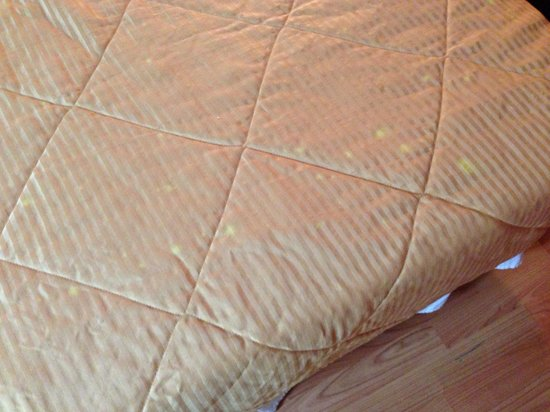 Rodeway Inn South Miami - Coral Gables: Stain comforter