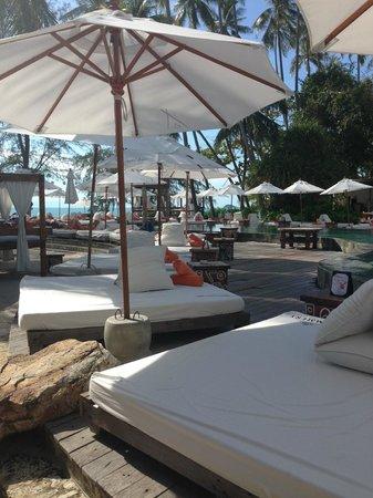 Nikki Beach Koh Samui: Pool Area