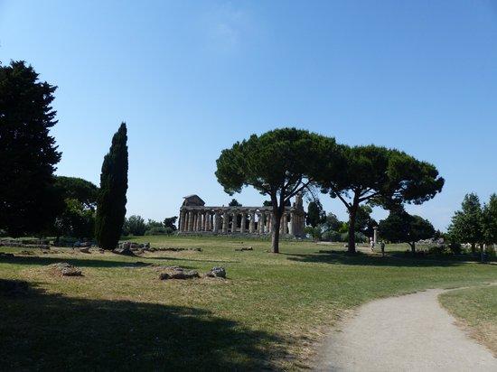 Templi Greci di Paestum: Lovely site