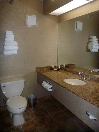 Luxor Hotel & Casino: Bathroom