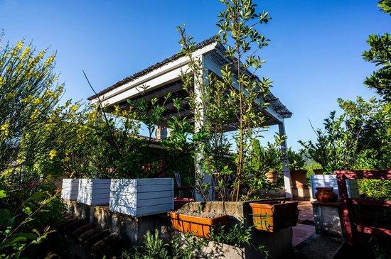 Le Jas Du Colombier : Terrasse de l'appartement