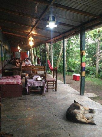 Amapondo Backpackers Lodge: 12