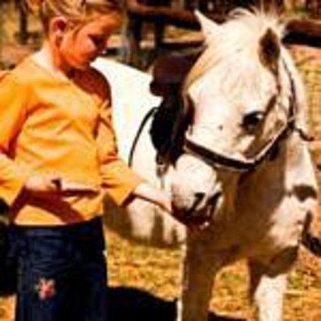 Mangela Animal Touch Farm: Pony