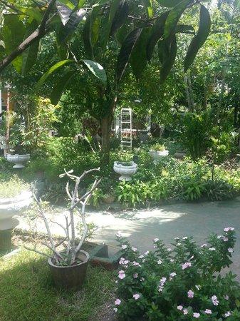 Life Ayurveda Resort: Blick in den Garten zwischen den Gebäuden