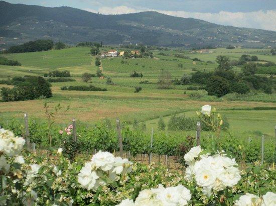 Agriturismo Spazzavento: vu de la maison