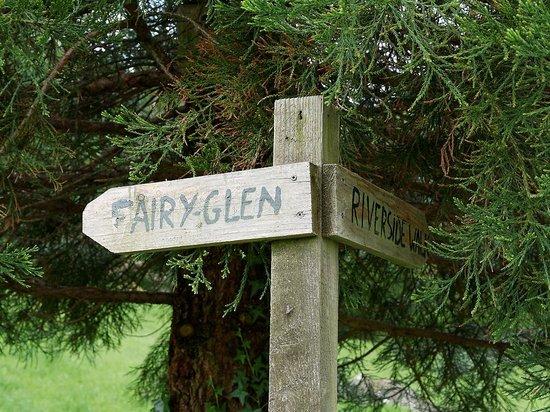 Fairy Glen : Path divides here