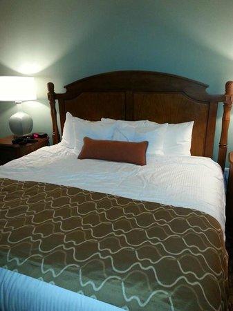 Wyndham Vacation Resorts Panama City Beach : Master bedroom