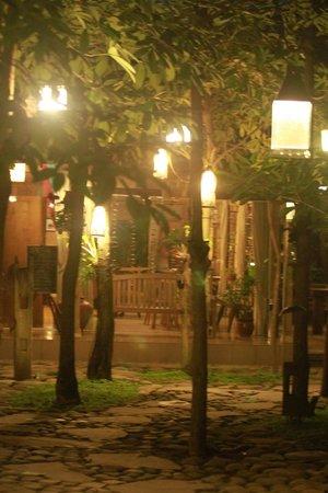 Rumah Batu Villa & Spa: green concept