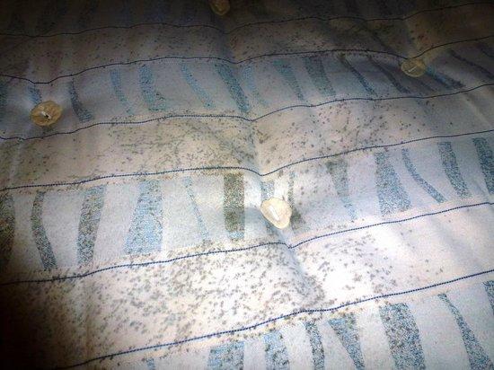Lagan Backpackers: Dirty mattress