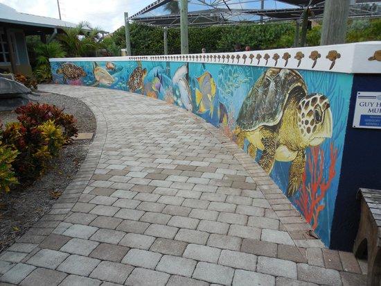 Loggerhead Marinelife Center: Art Wall