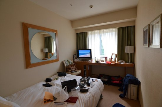 Hotel Sunroute Plaza Shinjuku: Single Bright Room