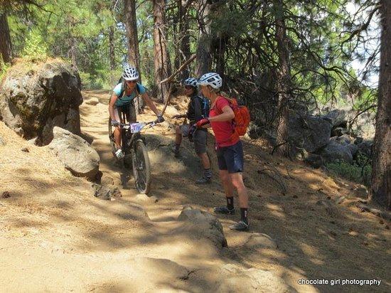 Cog Wild Mountain Bike Tours: working on skills trailside