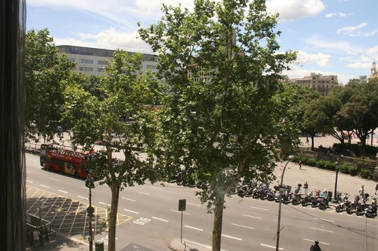 Olivia Plaza Hotel : View from room