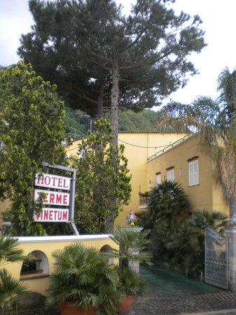 Hotel Terme Vinetum: ingresso principale dell hotel