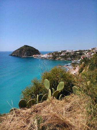 Hotel Vittorio: The Beach