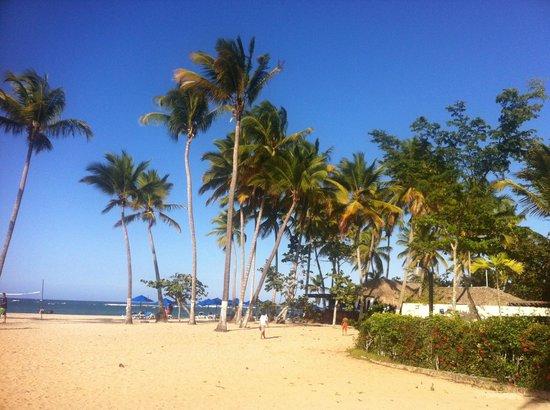 Hotel Beach House Playa Dorada : Playa Dorada