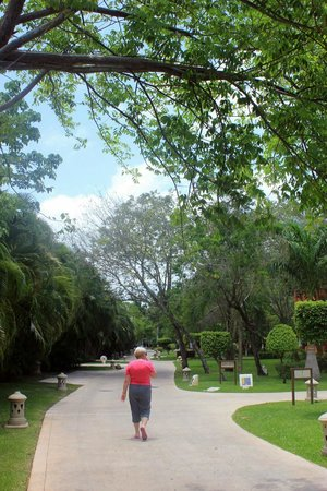 Iberostar Paraiso Beach: grounds and paths