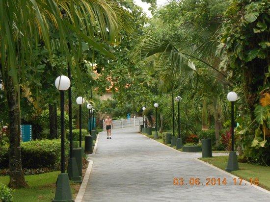 Hotel Riu Playacar: Corredor principal
