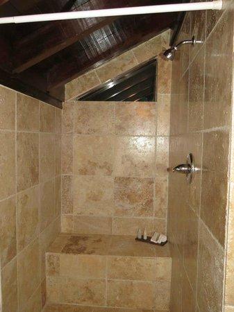 Renaissance St. Croix Carambola Beach Resort & Spa: Walk in marble shower