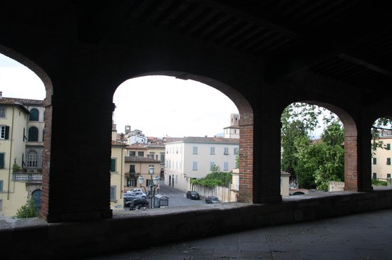 Toscana Saporita Cooking School : View of Lucca from its wall