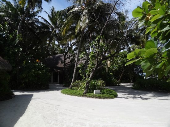 Niyama Private Islands Maldives: RESORT