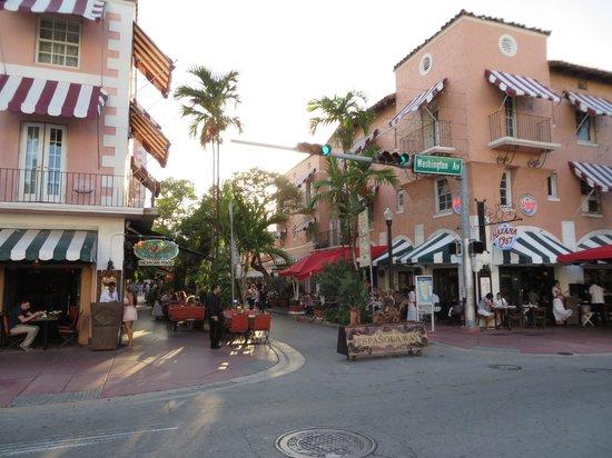 Casa Victoria Orchid : Espanola Way