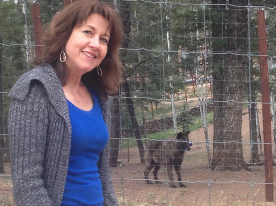Colorado Wolf and Wildlife Center: Getting close to Kenyi
