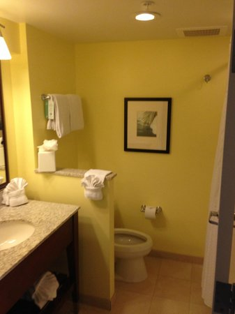 Holiday Inn Orlando – Disney Springs Area: Bathroom in Double Queen Pool Side Room