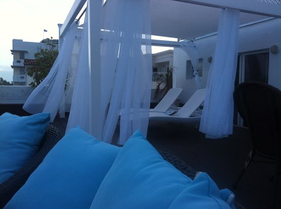 Penguin Hotel: Terrace patio