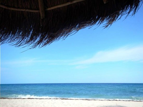 Nachi Cocom Beach Club & Water Sport Center: The view from our umbrella