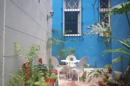 Casa Hilda y Alejandro: El patio