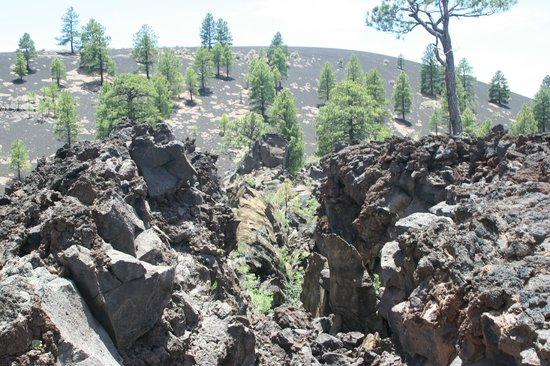 Sunset Crater Volcano National Monument : Volcanic area