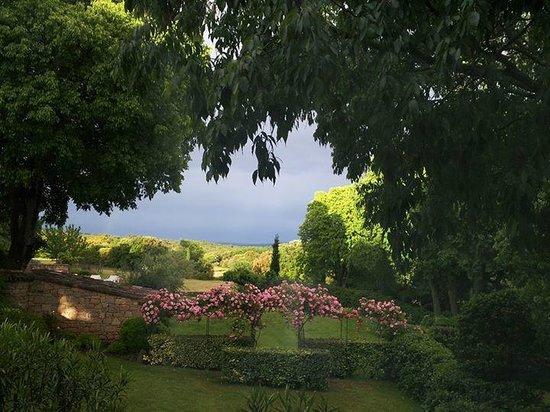 Mas d'Oléandre - Maison d'Hotes : vu du jardin vers le Mont Ventoux