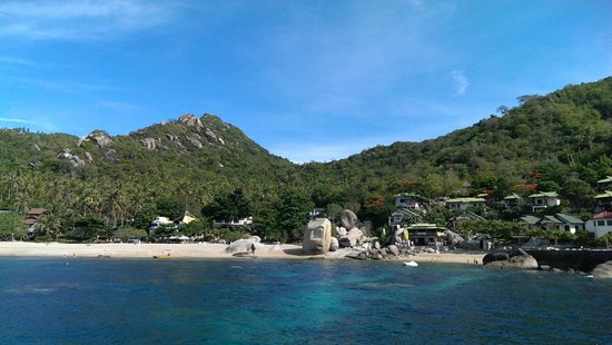 Calypso Diving - Koh Tao: Amazing Tanote Bay