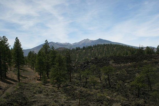 Sunset Crater Volcano National Monument : Scenery from the walk