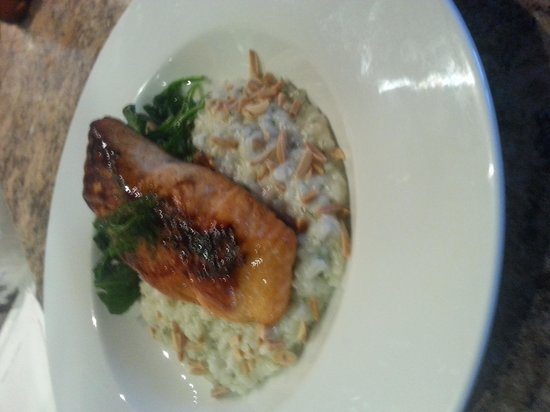 Dingo's Bar and Grill : Salmon