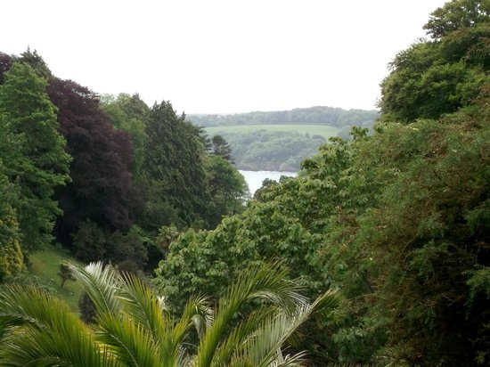 Glendurgan Garden: the valley