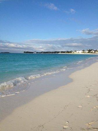 Treasure Cay Beach, Marina & Golf Resort : beach at Coco's