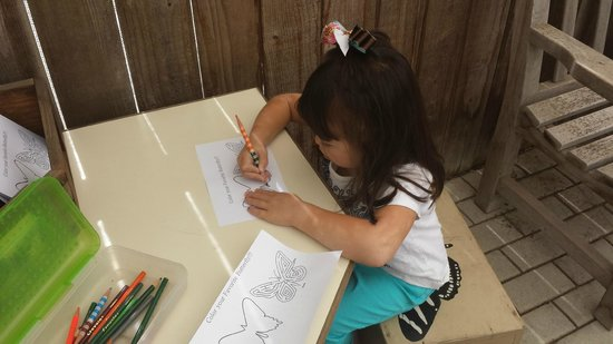 Botanica: The Wichita Gardens: Coloring in the butterfly exhibit