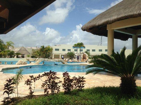 Dolphinaris Riviera Maya Park: View of the pool at Dolphinaris