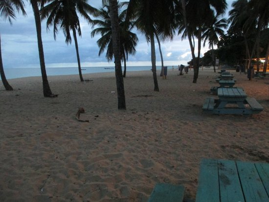 Crashboat Beach: Crash Boat Playa