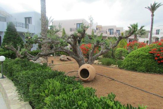 Ostria Resort & Spa : espaces verts
