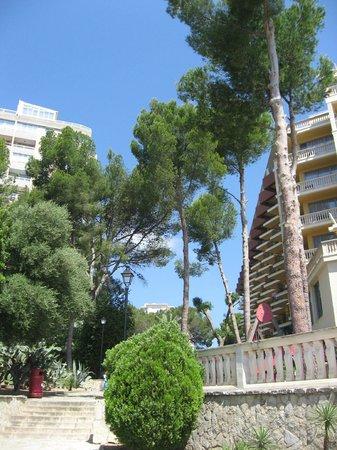 Barcelo Illetas Albatros: View between hotel & apartments