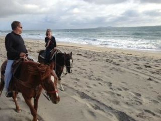 Happy Trails - Private Rides: San Diego Beach on Horseback with Happy Trails