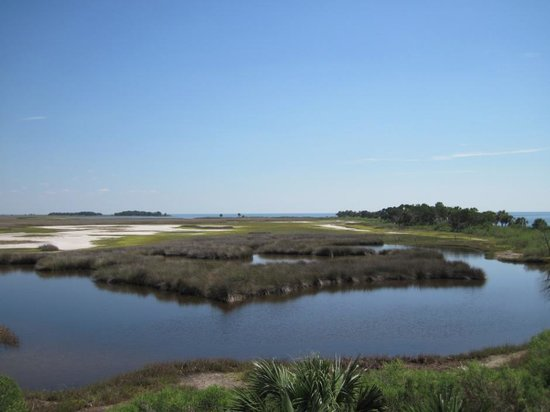 St. Marks National Wildlife Refuge: Wetlands
