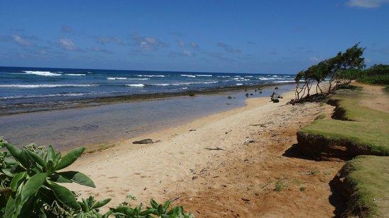 Kauai Beach Resort: zon, zee zand