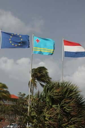 Bucuti & Tara Beach Resort Aruba: Flags in front of the resort