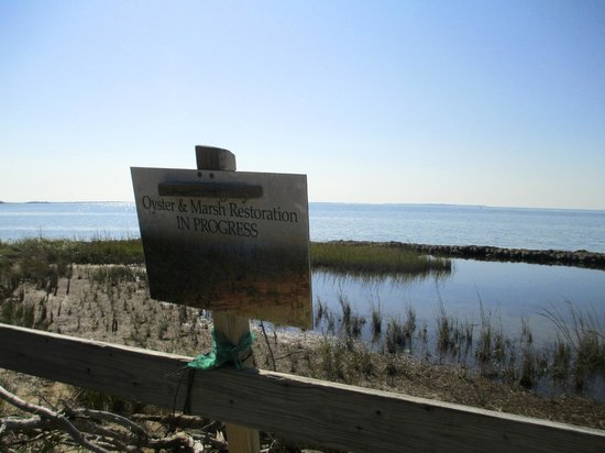 Springer's Point Preserve : View of sound and signage